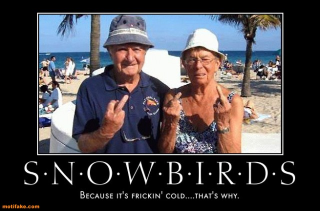 Time For The Snowbirds The Crazytruckers Com Blog